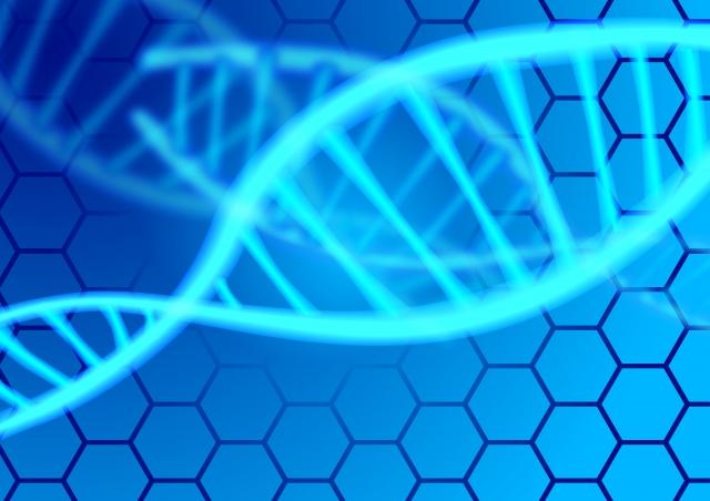 ゲノム検診
